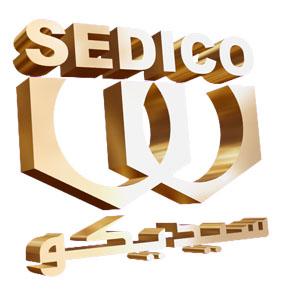 شركة جنوب مصر للصناعات الدوائية سيدكو